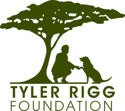 Copy-of-TRF-logo-WHite-background